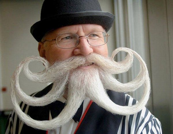 Best Cool Hair Images On Pinterest Beards And Mustaches - Mr incredibeard really coolest beard ever seen