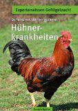 Alltägliche Hühnerkrankheiten - Gartenhühner.de