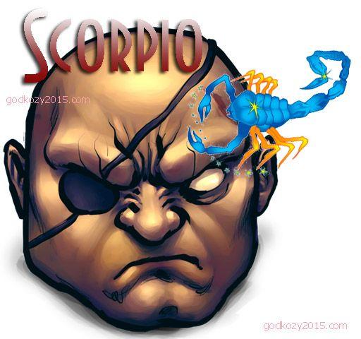 Гороскоп на 2015 скорпион мужчина http://godkozy2015.com/goroskop-2015-skorpion/ что ждет мужчин скорпионов в 2015 году