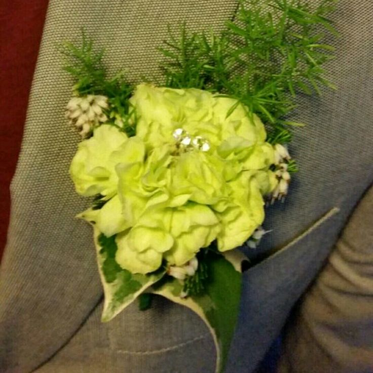 Carnation buttonholes