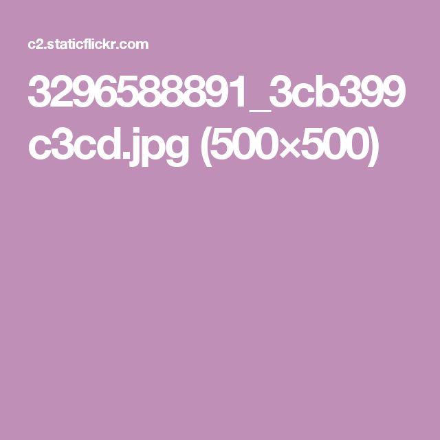 3296588891_3cb399c3cd.jpg (500×500)