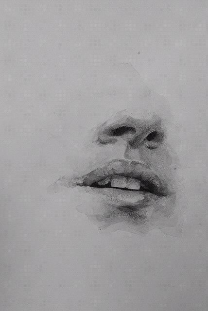 I like the idea of keeping the details of the mouth and nose but leaving the rest of the face blank