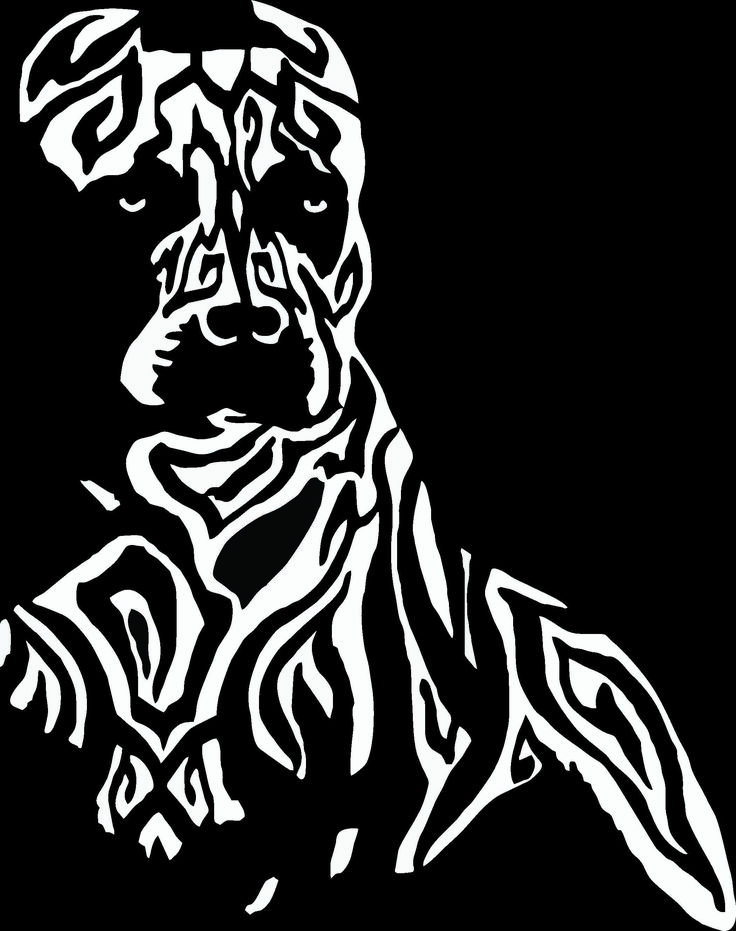 "Tribal Pitbull design sticker / decal for your car, boat, wall, ATV or anywhere you wish! This decal is 10"" x 8"" and available in 8 colors. www.BullySupplies.com"