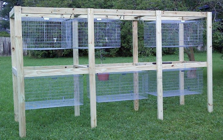 227 best images about animals on pinterest pvc pipes for Pvc rabbit cage