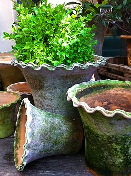 1000 images about Garden Pottery on Pinterest Gardens Terrace