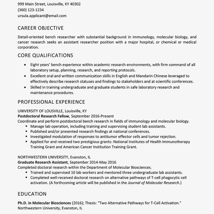 71 Unique Photos Of Example Of Resume for Teacher Fresh
