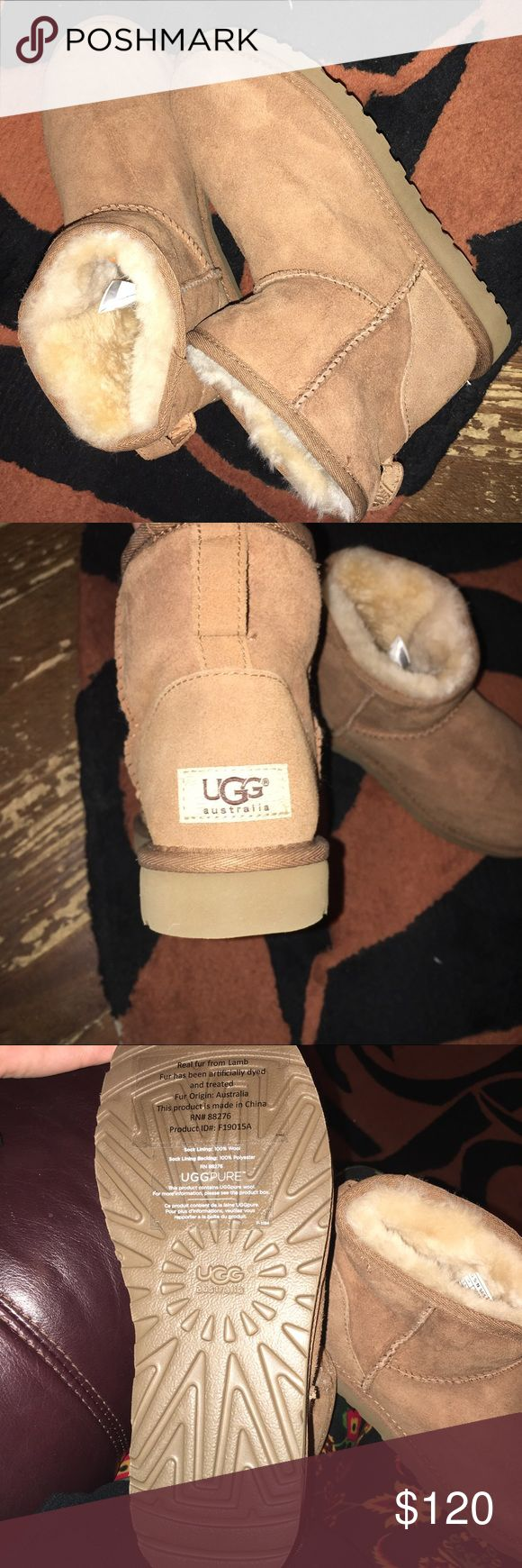 Authentic NEW ugg short boots Size 7 , received for Christmas only to find out I need a 6 in uggs so only selling because they are to big. Brand new and authentic posted pics of tag! Will do sw.aps or sell.  ‼️‼️If you ask to sw.ap you MUST have positive reviews like me. UGG Shoes Ankle Boots & Booties