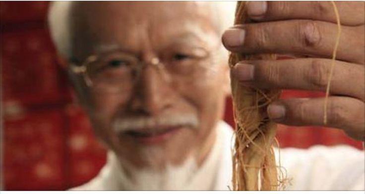 Vamos falar agora de uma raiz muito especial.O ginseng é um milenar remédio natural.Ele tem a aparência de um ser humano em miniatura e é reconhecido mundialmente como um grande energizante.