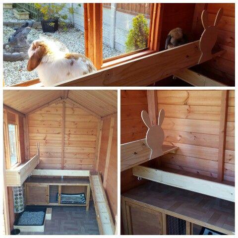 Rabbit Housing, outdoor