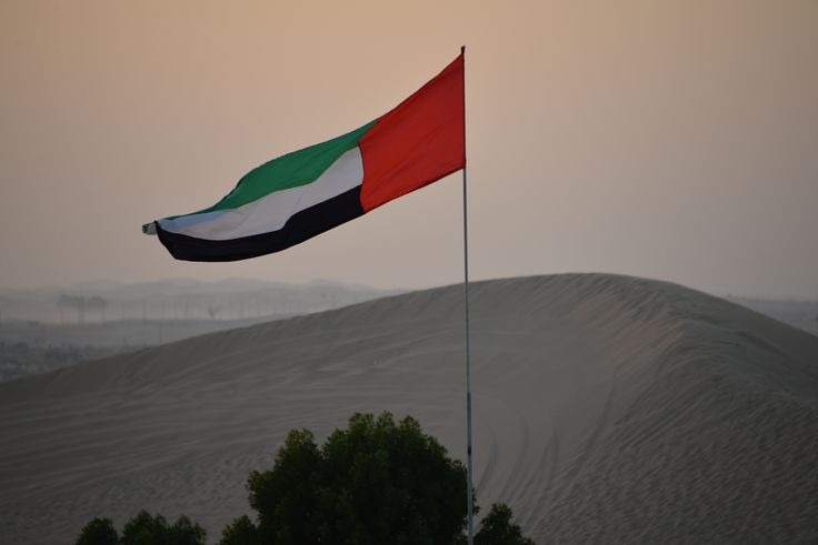 UAE flag at desert