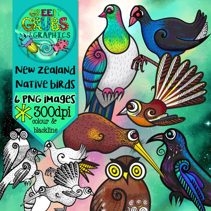There's a lot more to Aotearoa's bird life than the world famous kiwi! Are you looking for some quirky New Zealand native birds to flitter into your latest creative project? Then check out these beauties!  This clip art set contains 6 birds (in both colour and blackline) as high quality (300 dpi) PNGs with transparent backgrounds. Includes: Kereru (wood pigeon), Kiwi, Pukeko, Tui, Piwakawaka (fantail), Ruru (morepork)