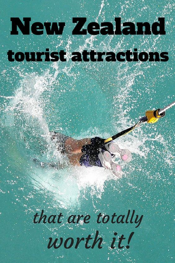 New Zealand tourist attractions can be expensive - find out here which ones are worth the splurge!
