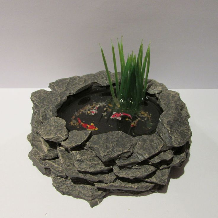 Garden Pond ~ with PLANT and FISH ~ Dolls House Miniature ~ 1/12th scale #Unbranded