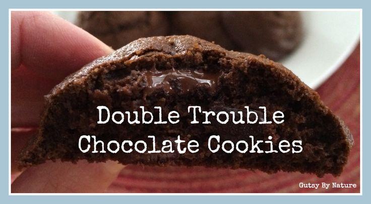#Paleo Chocolate Cookies (Grain Free, Dairy Free, Nut Free)