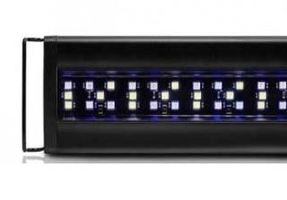 """Current USA Orbit Marine LED Lighting System W-Timer 48""""-60. Aquarium: Lighting-Strips The Current USA Orbit Marine LED fixture is a simple, straightforward LED light for aquarium applications where high PAR values aren't needed: marine fish, soft corals and some LPS corals. Available in: 8,000K, 12,000K, 445nm with UV and 460nm blue. Can be used as supplemental lighting or as your main light for your system. The Orbit Marine LED light features adjustable legs that allow each size to work on…"""