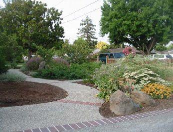 Lawn alternatives from California Native Plant Society.