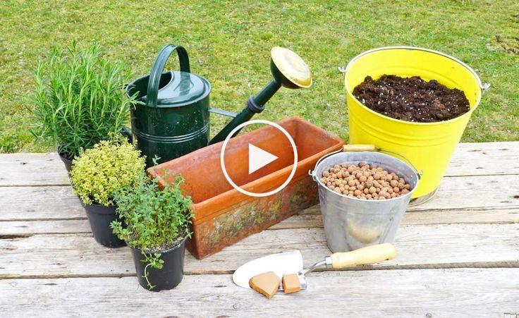 Video: Kräuterkasten selber bepflanzen -  Frische Kräuter schmecken einfach am besten! In diesem Video sehen Sie, wie man einen Kräuterkasten im Handumdrehen selber bepflanzt – so haben Sie die würzigen Geschmacksgeber immer griffbereit.