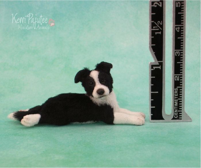 Adorable Border Collie puppy by artist Kerri Pajutee