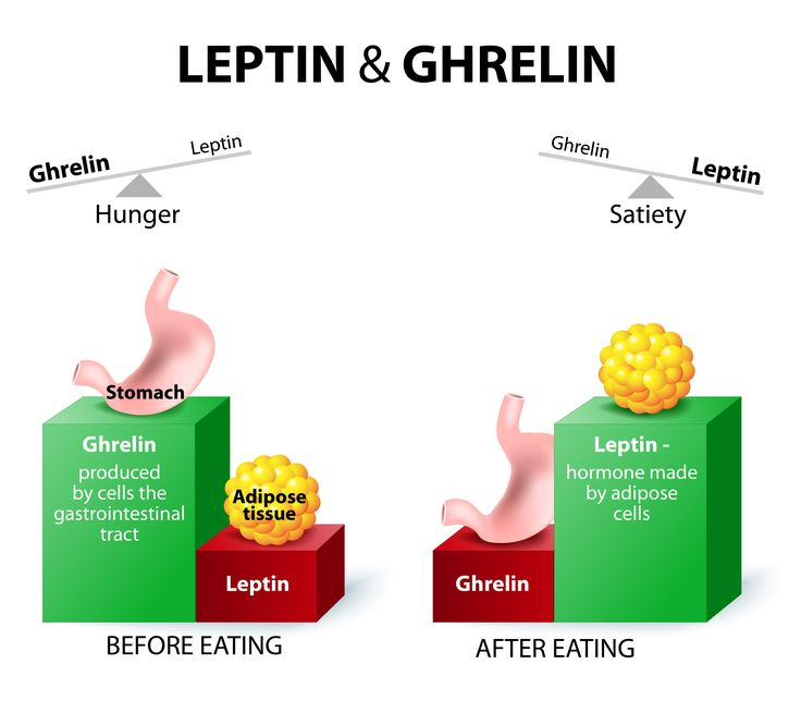 "Ghrelin is an important hormone when it comes to health.  It's not ""good""…"