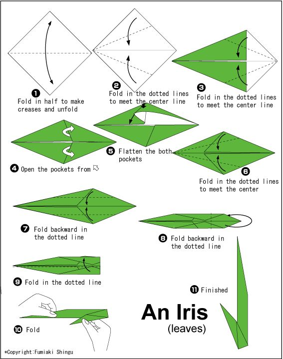 14 best origami images on pinterest paper toys papercraft and origami iris leaves where are the flowers mightylinksfo