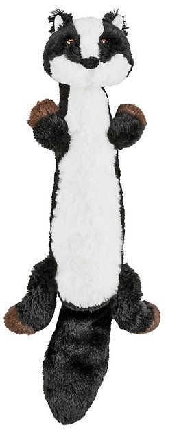 Buy Frisco Skinny Plush Squeaking Skunk Dog Toy At Chewy Com Free