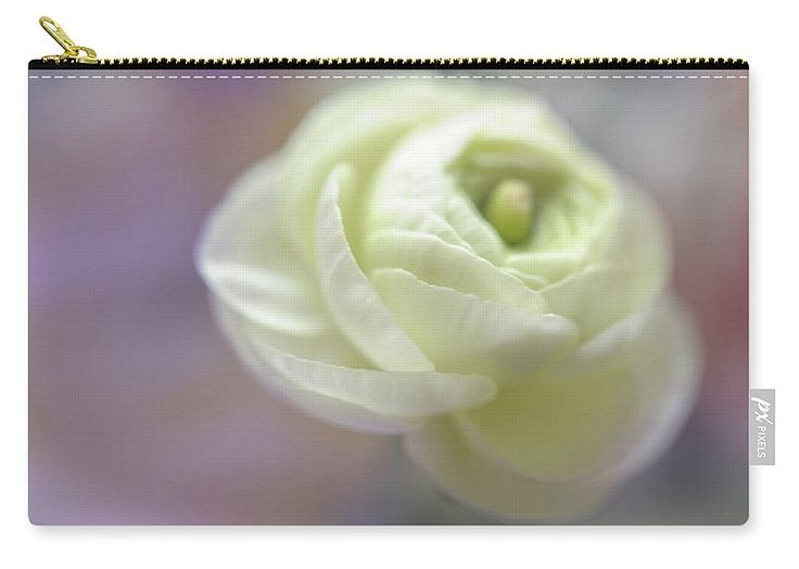 """White Ranunculus Bud Carry-All Pouch by Jenny Rainbow.  Our pouches are great.  They're availabe in sizes from 6"""" x 5"""" up to 12.5"""" x 8.5"""".  Each pouch is printed on both sides (same image)."""