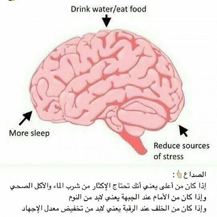 Pin By Lili On Dit Sources Of Stress Eat Food Drinking Water