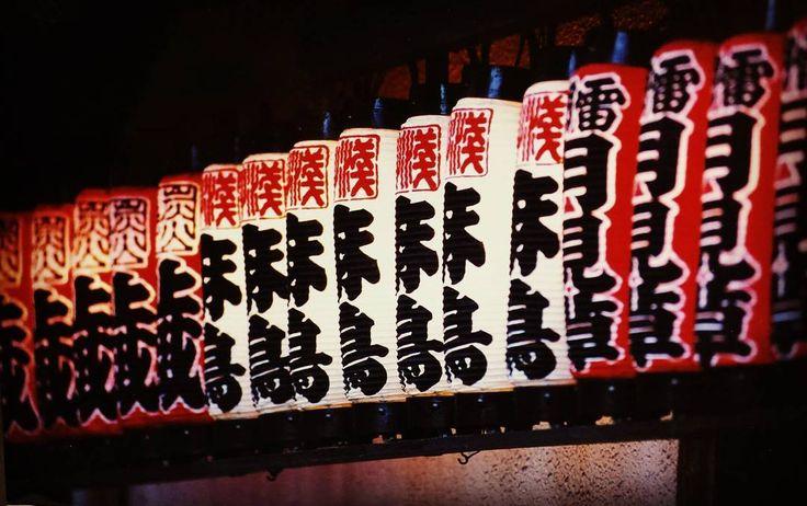 月見草&麻鳥&蔵提灯  #三社祭 #三社祭り #株式会社浅草 #表門 #浅草 #ASAKUSA #Kaminarimon #Asakusatemple #sanjyamatsuri #sanjyafestival #提灯 #축제 #节日 #雷門 #festival #淺草 #Tokyo #japan #japantrip #sanjamatsuri #photography #Events #TSUKIMISO #camera #麻鳥 #japantravel #아사쿠사 #浅草寺