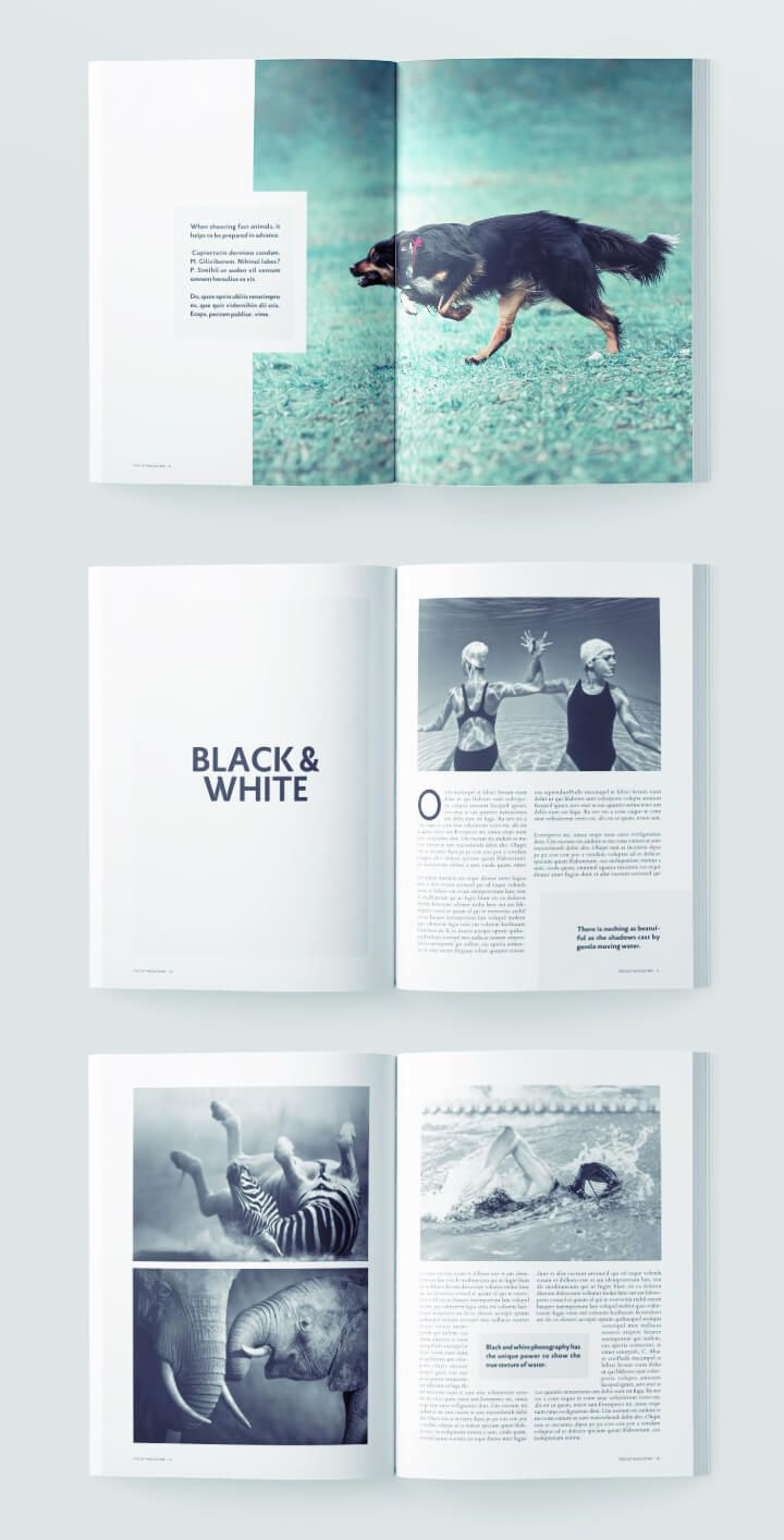 Photography Magazine Template Book Design Layout