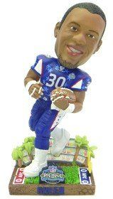 Green Bay Packers Ahman Green 2003 Pro Bowl Forever Collectibles Bobble Head