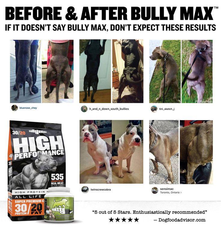 Bully Max Dog Food Results