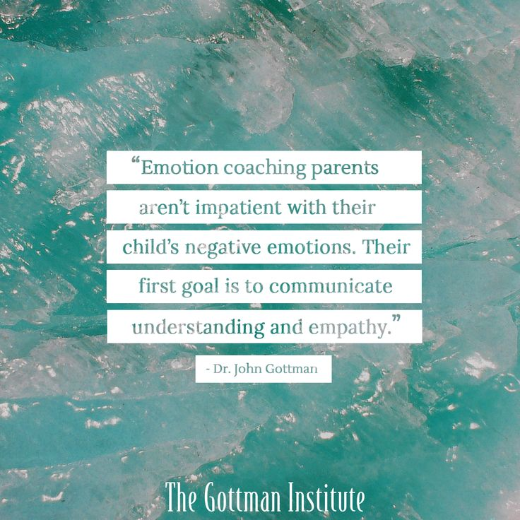 Emotion Coaching Parents Communicate Understanding And