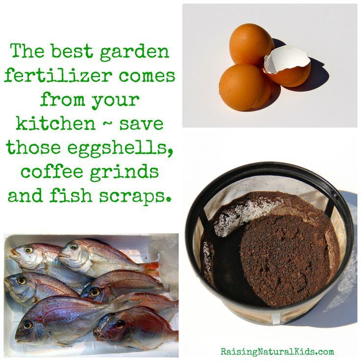 DIY Organic Garden Fertilizer
