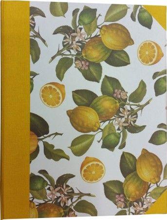 ricettario anelli limoni