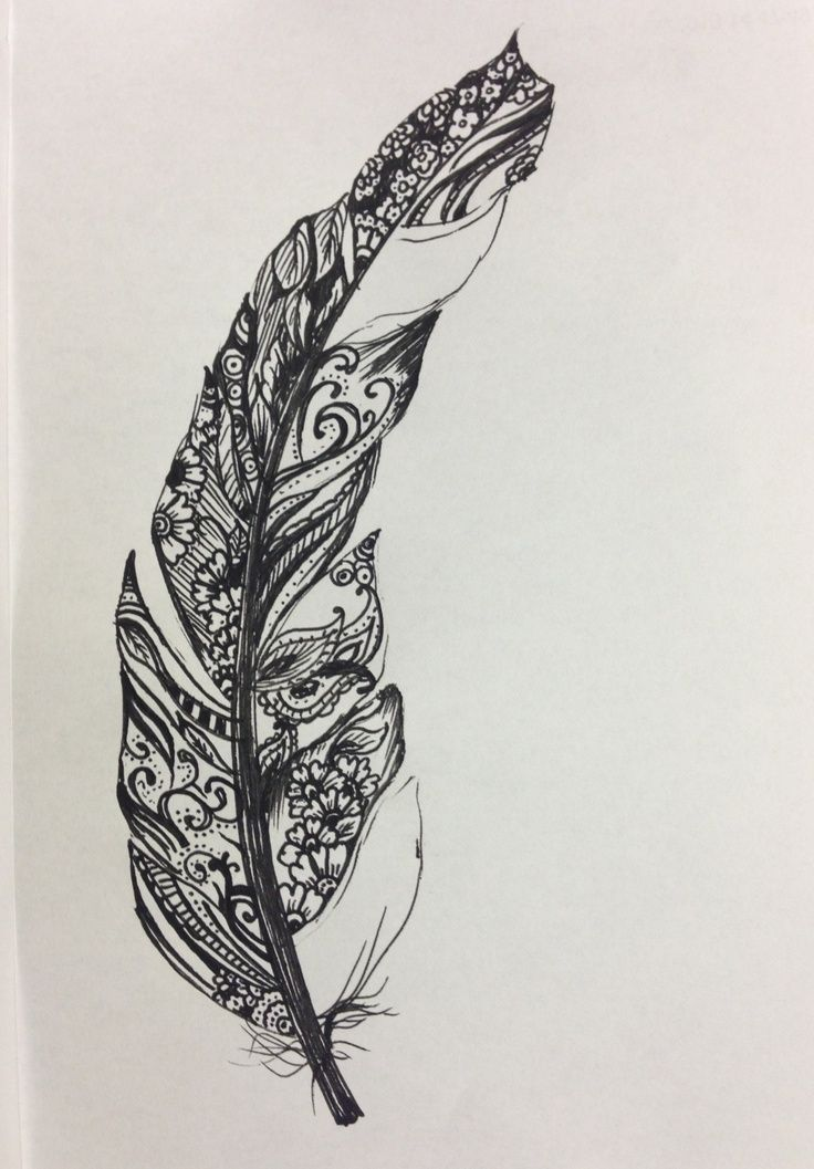 drawings of feathers - Google Search