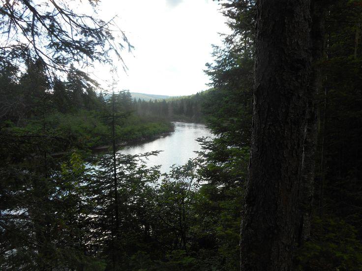 Devils Elbow Nepisiquit River Northern NB