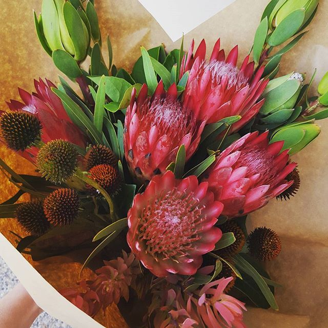 Bouquet of gorgeous natives and echinacea.