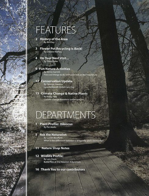 https://flic.kr/p/4YhmM1 | Tear Sheet:  Table of Contents | Leaf and Owl table of contents page.  A clean way of presentation