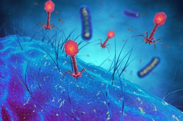 La  era soviética podría ser la nueva arma en la guerra contra la resistencia a los antibióticos