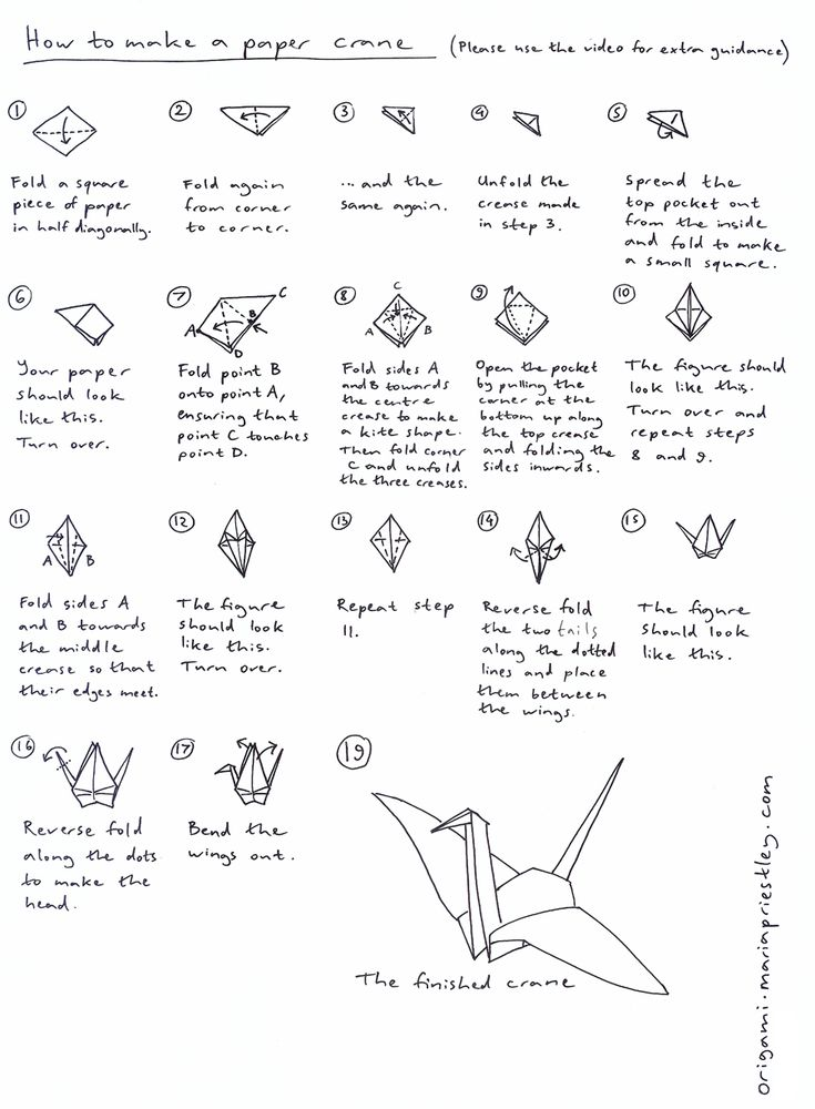best 25 origami swan instructions ideas on pinterest