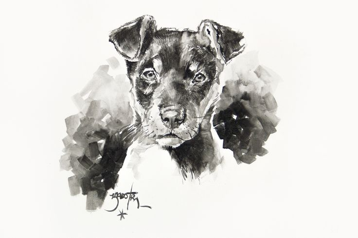 #celebriwines #originalart #interiordesign #dogs 60cm x 90cmSketch in charcoal with wash. ...