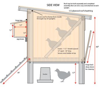 My coop I built but modified quite a bit. It was still helpful to have the dimensions to go by:) This is the free Purina Mills Coop plan. Nest boxes are too high and sky light is no good for sunny climates but overall it's a nice coop.