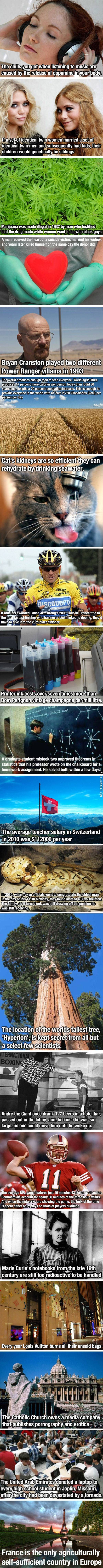 Facts. Some are way cool. Check out that teacher salary in Switzerland . Katherine that's the place to be, maybe take a side trip and see if the hills are still alive?