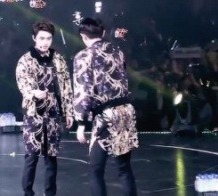 When chanyeol slaps kyungsoo's butt during xoxo... hahaha love them (gif)