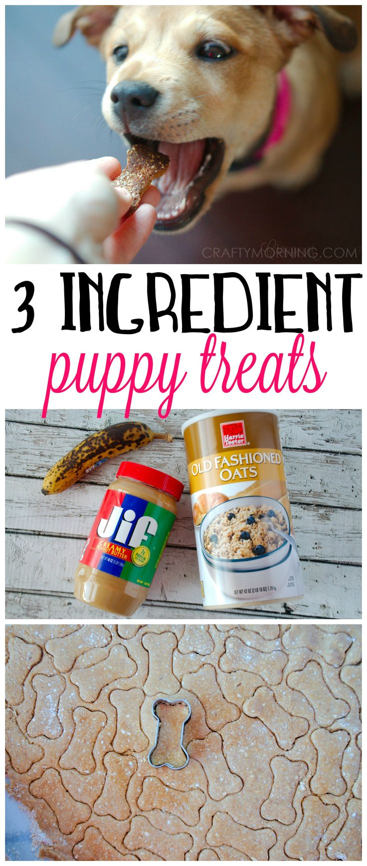 This 3 ingredient puppy treat recipe was a HIT with my dog!! They used peanut butter, banana, and oats. A healthy alternative.