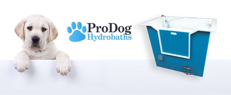 Pro Dog Hydrobaths, Ringmer, Lewes, East Sussex, England. Pro Dog Hydrobaths provide Hydrobaths and Hydro-mobile professional dog grooming baths, dog grooming van conversions from start to finish, fibreglass lining for vans, soap containers and bespoke cupboards / storage units to customer requirements.