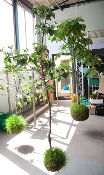 """What started out two years ago as the whimsical project of Fedor, a Dutch fellow about whom nobody seems to know much, has blossomed into a series of string gardens: planted hanging gardens …"