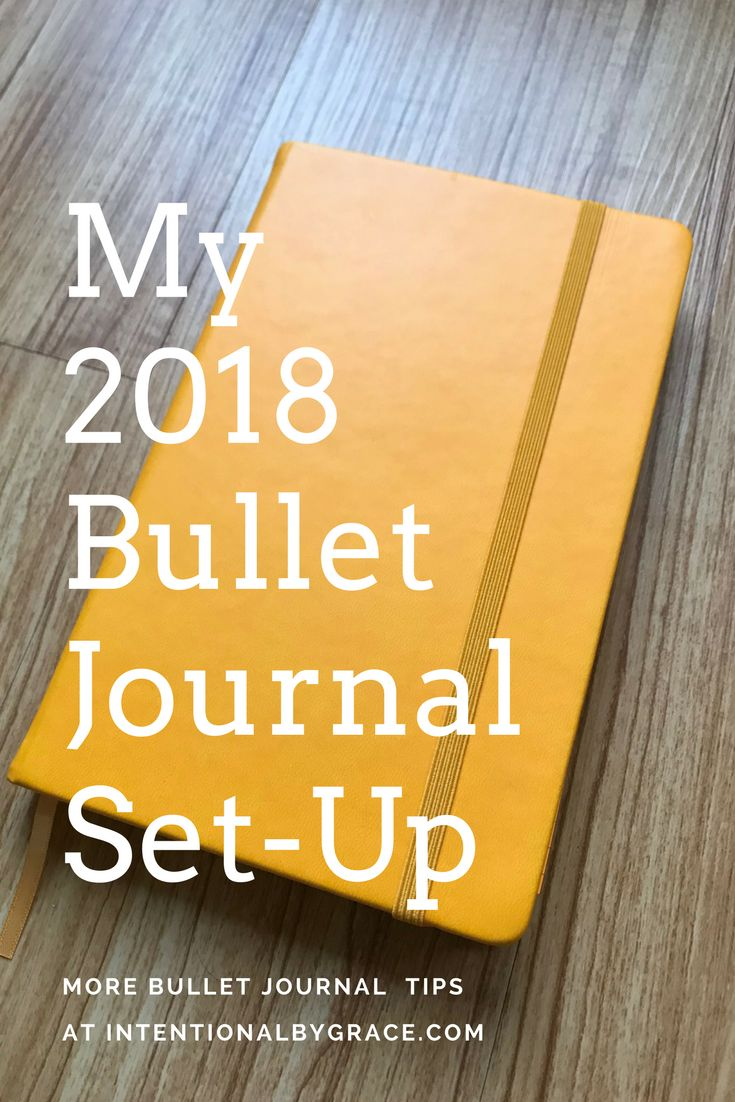 My 2018 Bullet Journal Set-Up - like the pages for monthly checklists (goals, habits, things to clean, etc)