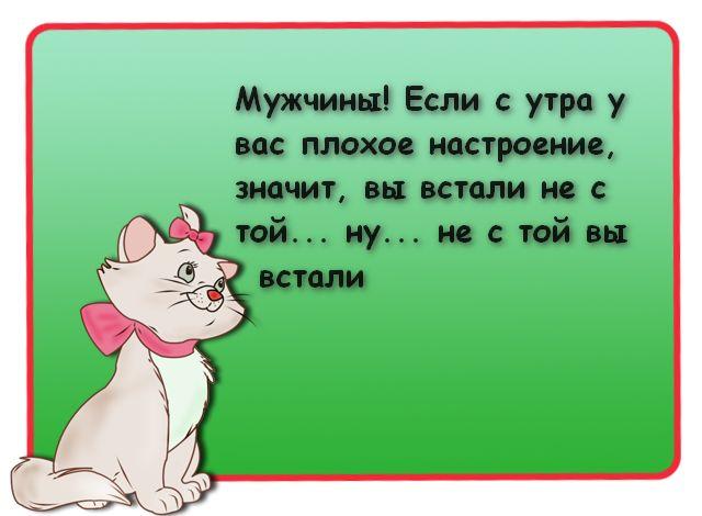 Недетские приколы в веселых картинках :)
