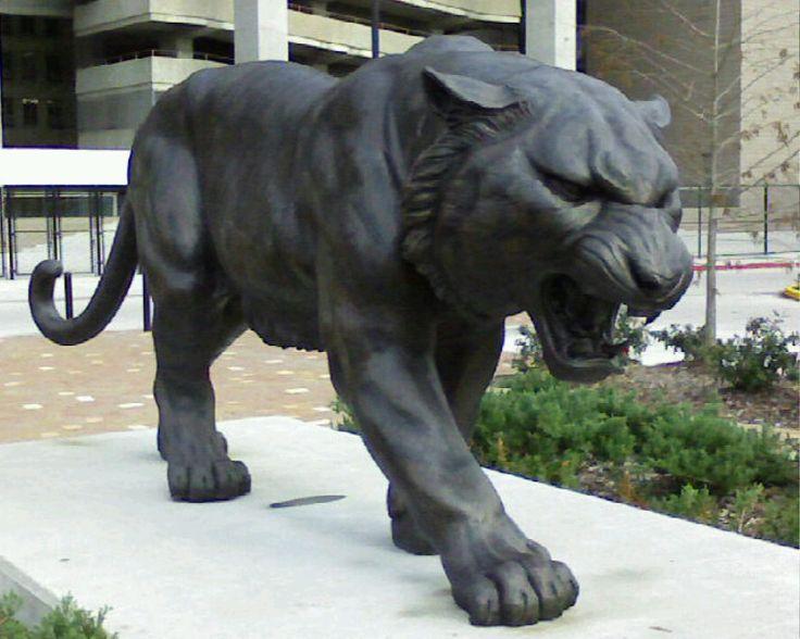 Kappa ull tiger